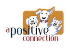 A Positive Connection Logo